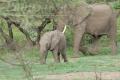 tanzania_manyara_dsc_0435