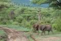 tanzania_manyara_dsc_0436