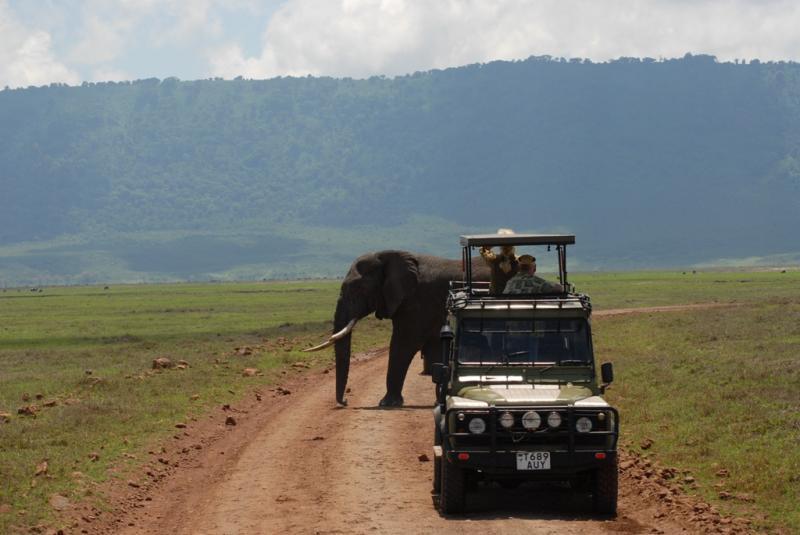tanzania_ngorongoro_dsc_0219