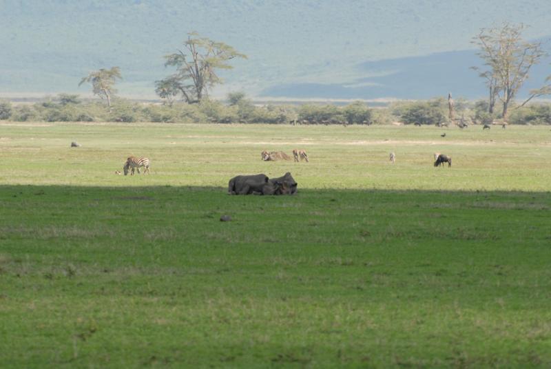 tanzania_ngorongoro_dsc_0371