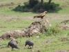 tanzania_ngorongoro_dsc_0293