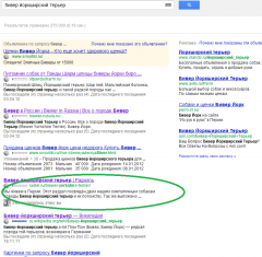 google_biewer_search